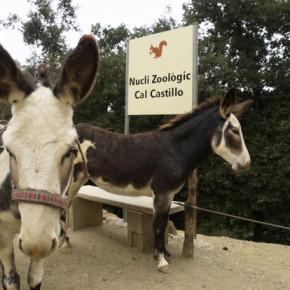 """Ciutadans (C's) Sant Cugat pide explicaciones al equipo de gobierno por la """"falta de rigurosidad"""" en la expropiación de Cal Castillo"""
