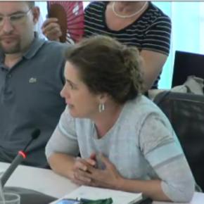 """Munia Fdez-Jordán """"Queremos proteger Torre Negra pero no cómo lo hace el equipo de gobierno que acumula sentencias desfavorables"""""""